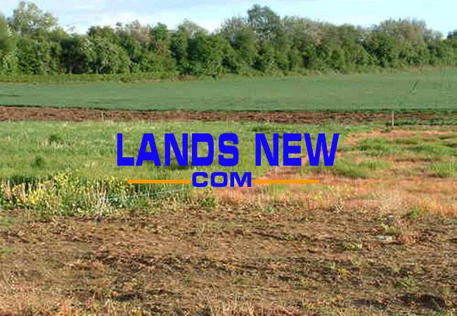 quy định về mua bán sang nhượng đất nông nghiệp